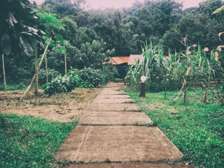 Road in Mondulkiri