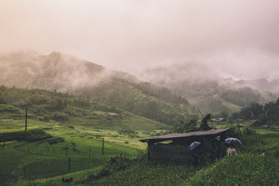 Vietnam hills in the mist and rain