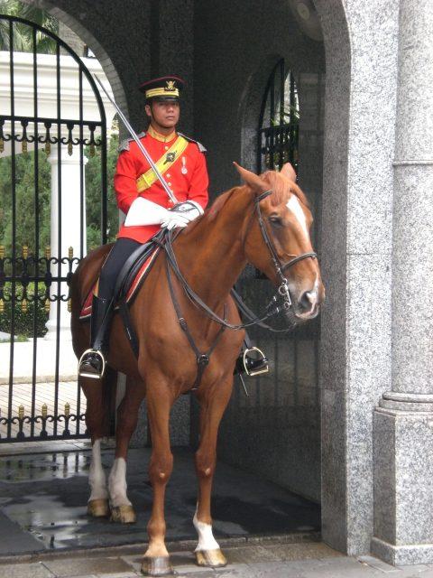 Royal guard, Malaysia