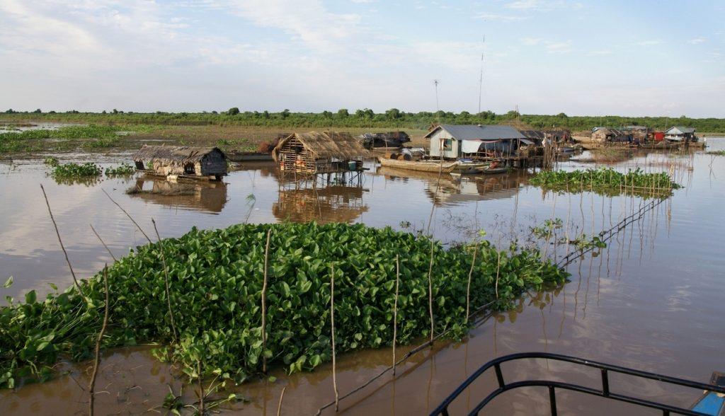 Cambodia- rural scene