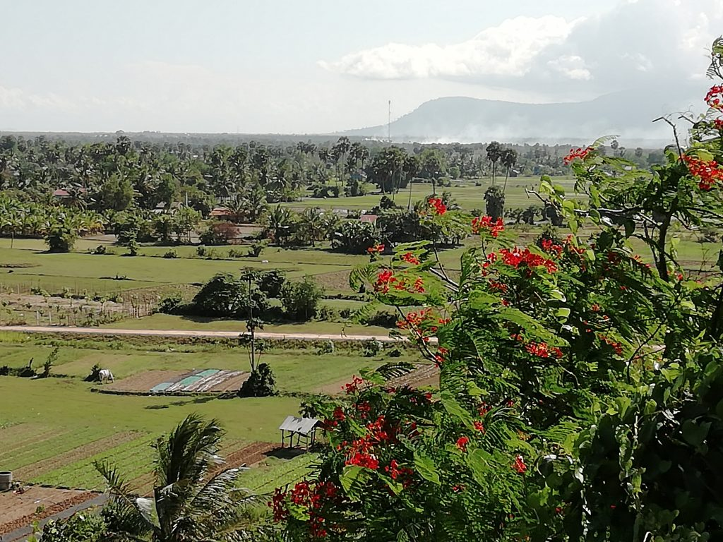 View from Phnom Sorsia over the Kampot rice fields