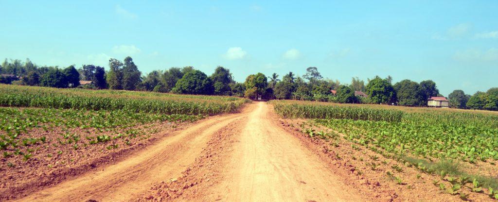 Rural kratie, cambodia