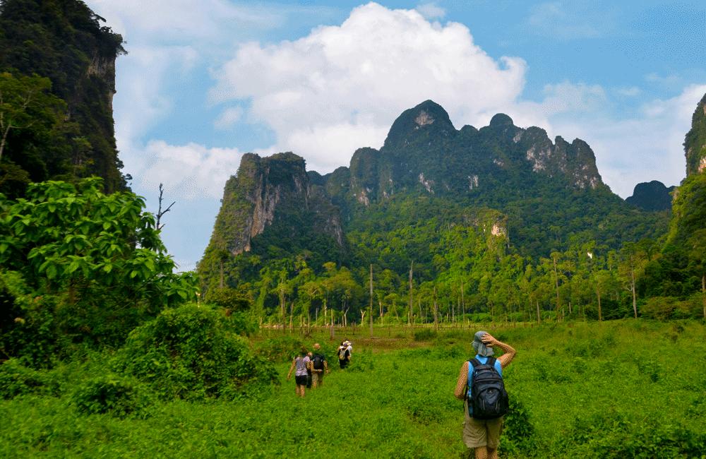 Trekking in Khao Sok