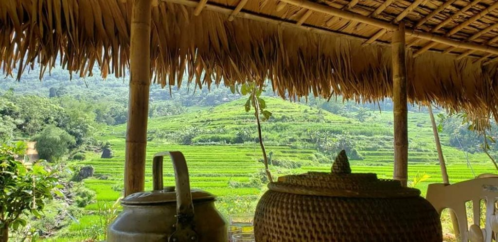 Pu Luong view of the rice terraces