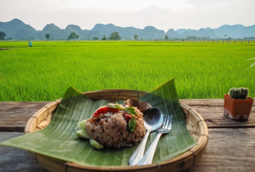 Green ricefields in Kanchanaburi
